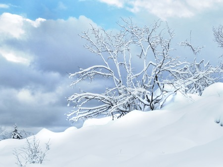 a view of fresh snow on a mountain photo