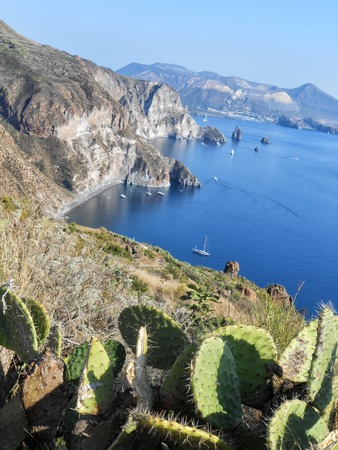 lipari: A view of prickly pear in Lipari,Sicily,Italy