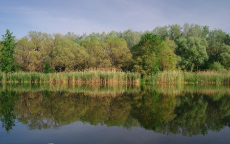 View on the river , spring  Ukraine  photo