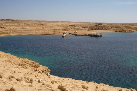 tyrant: A beach Coast of Red sea,Egypt