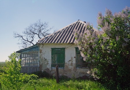 Abandoned house in the countryside near a forest