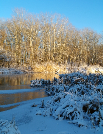 Winter of the river
