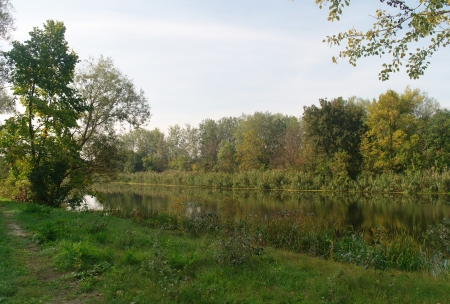 River landscape and an autumn wood Stock Photo