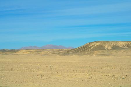Egyptian desert  photo