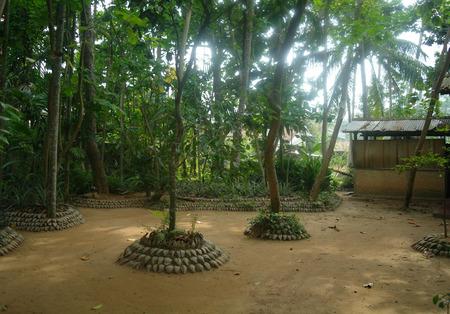 tropics: house in the tropics,Sri Lanka