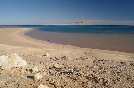 tyrant: A beach Coast of Red sea,Egypt.