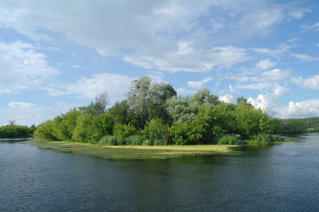 River, land with trees and cloudy sky. Фото со стока
