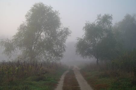 country road in autumn in the mist. 版權商用圖片