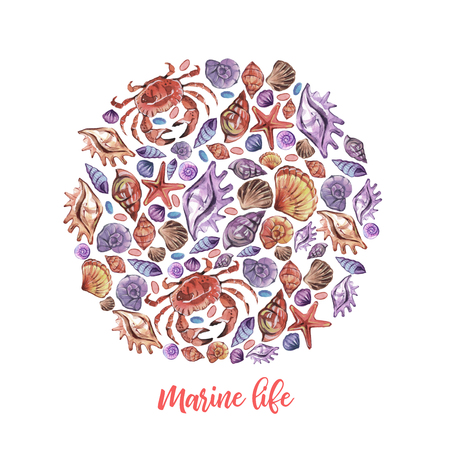 Watercolor circle Cartoon marine life for decoration design on white background. Ocean cockleshell.