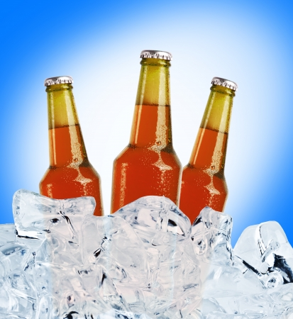 Beer is in ice Stock Photo - 15149811