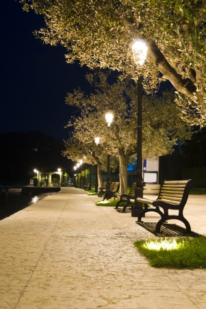 benches on the pavement in the light of a lantern at night in summer