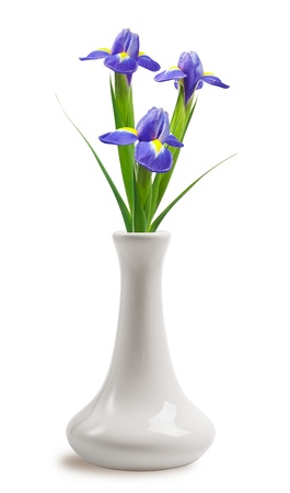 Beautiful bright irises in vase on White Background photo