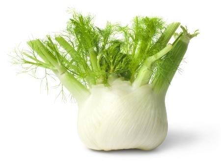 erva doce: Funcho isolado no fundo branco