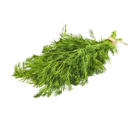 Dill isolated on white background Stock Photo - 16995296