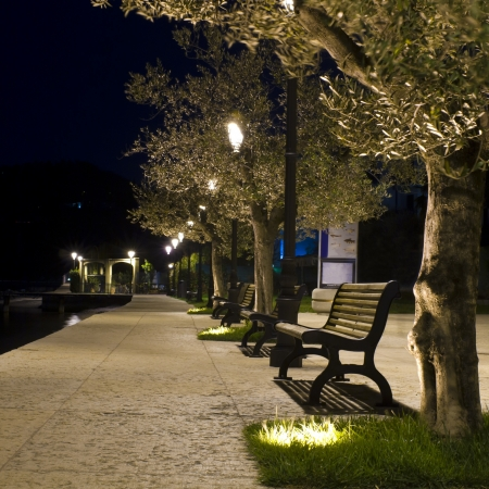 Benches on the pavement in the light of a lantern photo