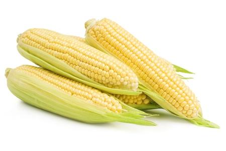Corn Standard-Bild