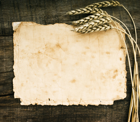 Old paper on wood background with wheat and rye ears