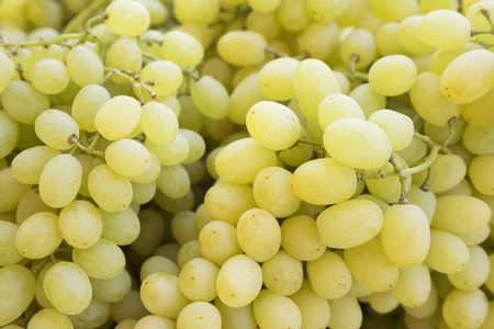 Grape. Wine grapes background.Green grapes. Grapes an market. It can be used as a food background (selective focus)