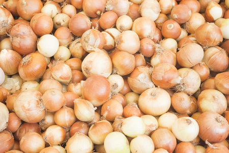 Onion harvest.Fresh golden onions. Onions background. Ripe onions. Onions in market.