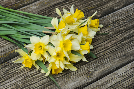 bouquet of fresh spring flowers daffodils on a wooden background. Top view