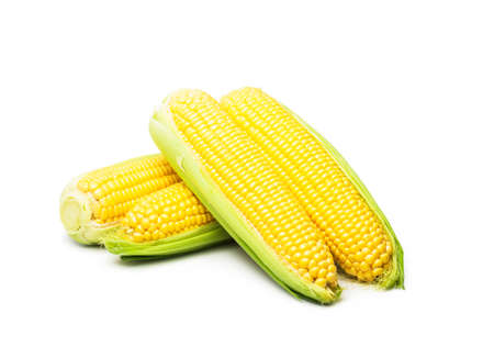 Sweet corn isolated on white background Standard-Bild