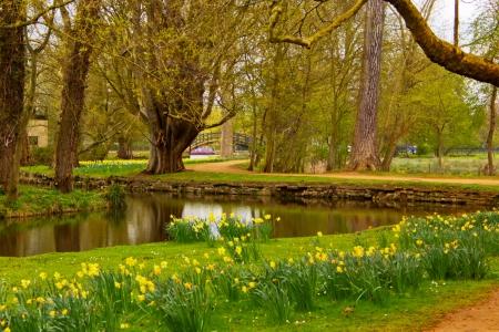 Cherwell River in Oxford