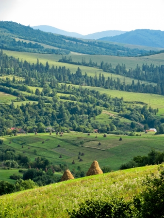Summer landscape in the Carpathian mountains in Ukraine Stock Photo