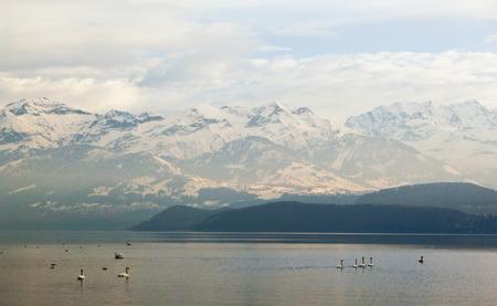 Alps and Thun lake near Spiez town in Switzerland, Europe