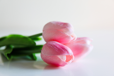 Three pink tulips on a light background