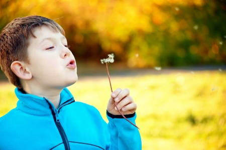 Child blowing Dandellion seed  Stock Photo