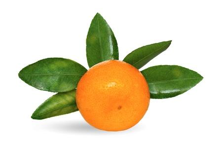 mandarina jugosa con hojas verdes sobre un fondo blanco