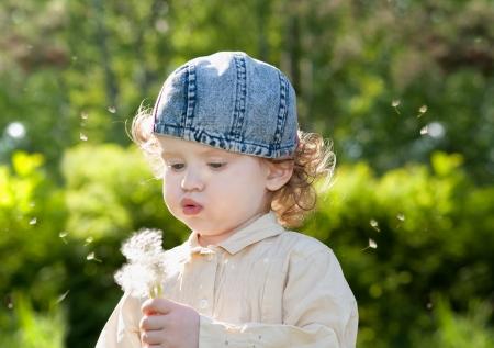Beautiful little curly girl blowing dandelion, horizontal shot Stock Photo