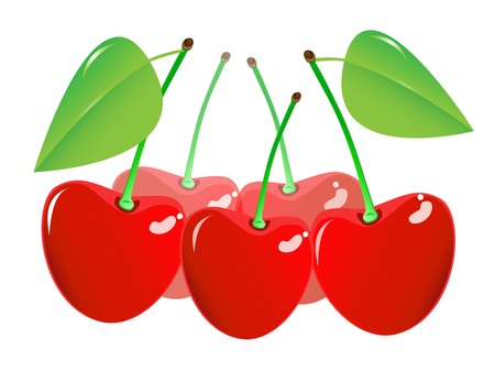 Cherry on a white background. Vector EPS10. Stock Vector - 17637938