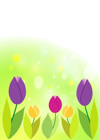 Tulips on green bokeh  Spring background  Vector
