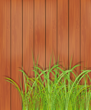 wooden fence: Wooden fence and green grass
