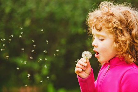 at ease: Beautiful little curly girl blowing dandelion, horizontal shot. Stock Photo