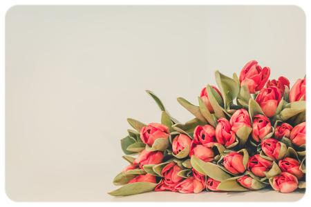 Vintage old flower, toned photo. photo