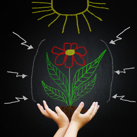 Hand against blackboard with drawing green leaves and sun. New life and ecological concept. photo
