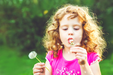 at ease: Beautiful little curly girl blowing dandelion, horizontal shot Stock Photo