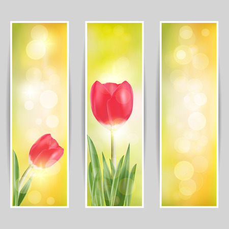Spring vector, set of red tulip and green grass in sunny bokeh background. Illustration