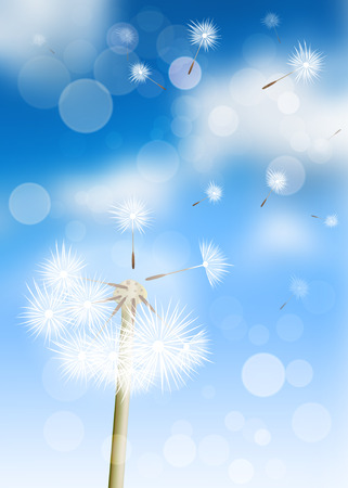 Vector dandelion and seed in the blue sky. Illustration