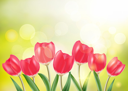 red tulip: Spring vector, set of red tulip and green grass in sunny bokeh background. Illustration