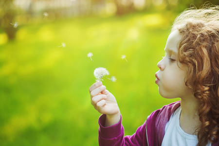 Child with white dandelion in your hand.   Reklamní fotografie