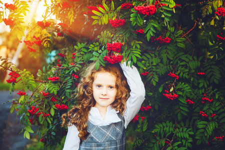 sundress: Schoolgirl with a white shirt and a sundress near a mountain ash tree in sunset light.