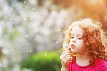 atmung: Kleines lockiges Mädchen bläst Löwenzahn.