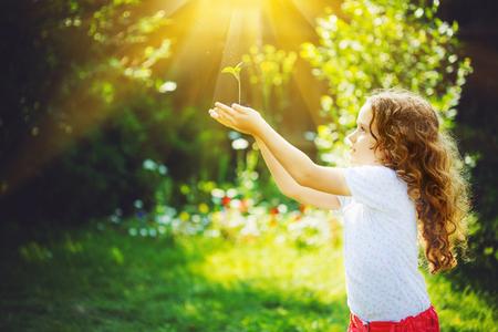日光の下で若い緑の植物を保持している小さな女の子。生態学の概念。Instagram のフィルターに調色の背景。 写真素材