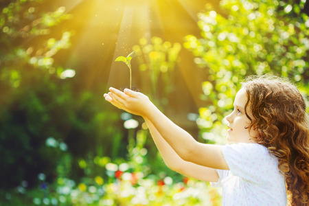 plant hand: Little girl holding young green plant in sunlight. Ecology concept. Background toning to instagram filter.