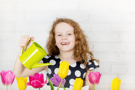 flowers garden: Toothless laughing little girl watering tulips flower from can.