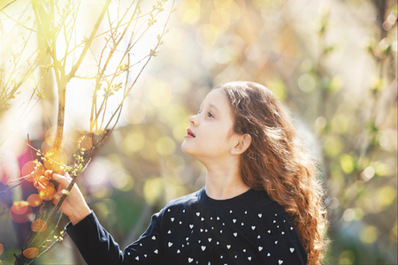 germination: Child holding young green tree branch in sunlight. Ecology concept.