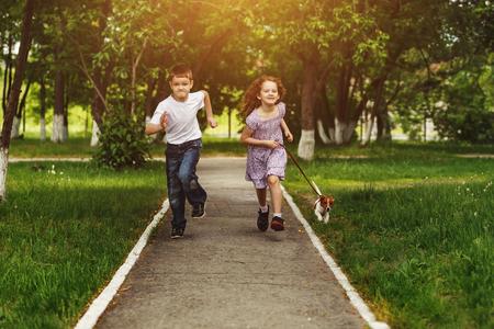 mujer alegre: Niño y niña se ejecutan en un parque con un cachorro jack russell terrier.